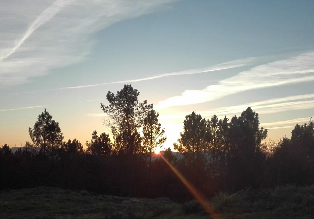 Ayudas para emprendedores del rural gallego